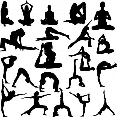 Flexibility Factor